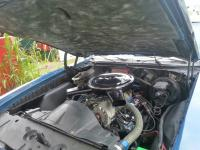 Pontiac  (20130909_161735_resized.jpg)