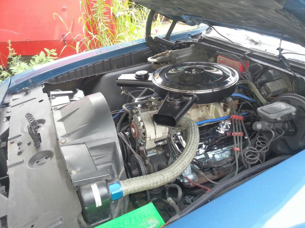 Pontiac  (20130909_161740_resized.jpg)