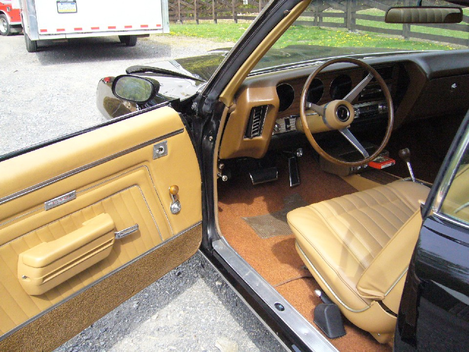 Pontiac (8.JPG)