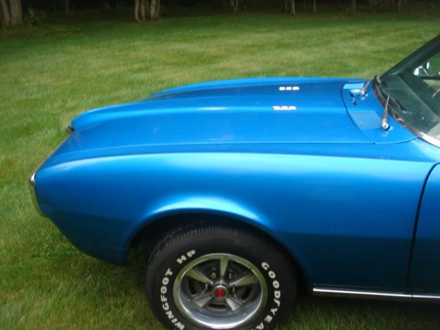 Pontiac (DSC01282.JPG)