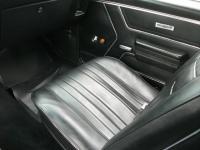 Pontiac (DSCF6768.JPG)