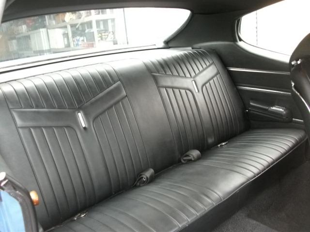 Pontiac (DSCF6784.JPG)