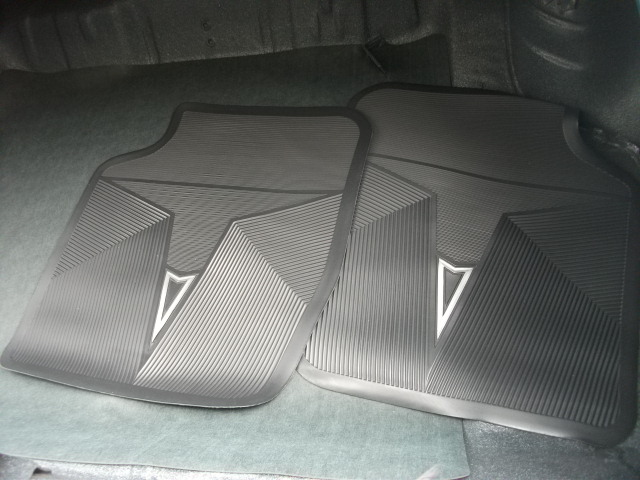 Pontiac (DSCF6791.JPG)