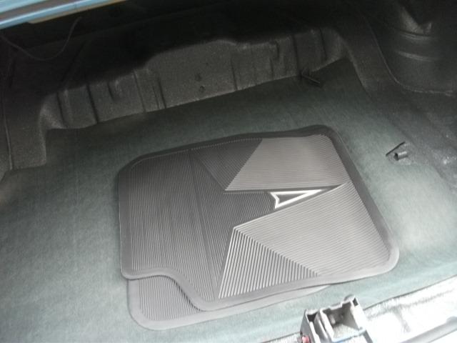 Pontiac (DSCF6797.JPG)